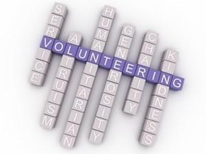 Stagii de voluntariat